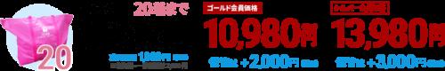 price_tsumeho20