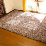 カーペットと布団を同時に出せる宅配クリーニングはある?安いプランはどれ?
