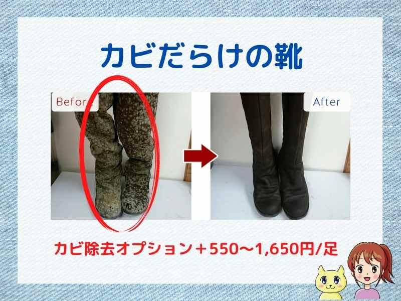 美靴パックでカビを除去してもらう場合の料金